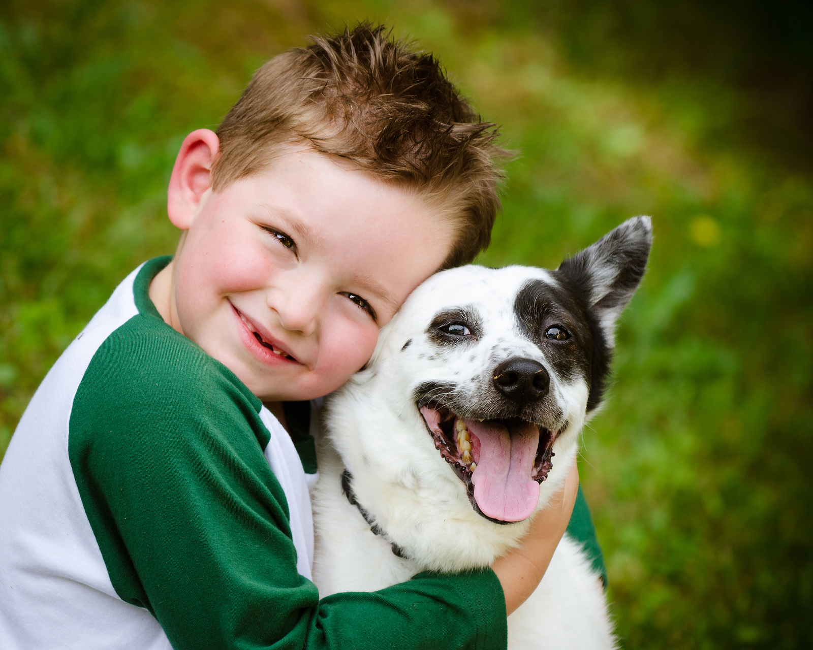 Therapy Dogs Can Lead To Happiness Lessen Feelings Of Depression Paws Claws Pet Medical Center